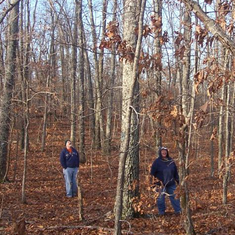 Illinois landowners enjoying woodland.